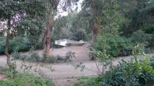 El safareig vist des d'un dels camins de la zona boscosa.