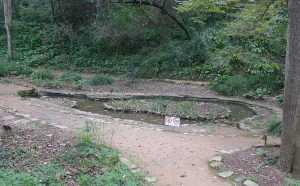 L'estany que dòna nom al clot.
