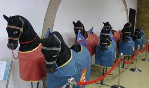 Els Cavallets Cotoners.