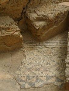 Detall del mosaic de l'apodytherium.