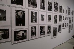 Fotos a l'exposició. Foto JAF.