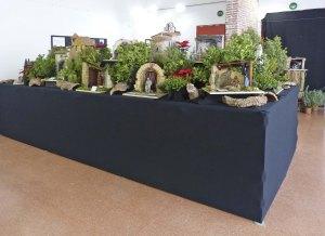 Exposició de pessebres plantats a Sant Mateu. Foto Enric Almar.