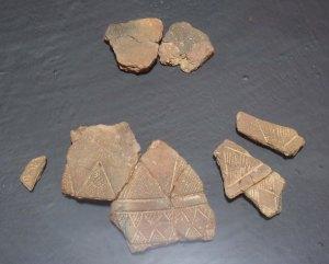 Fragments de vas campaniforme.