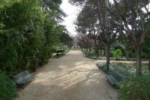 Un camí del parc.