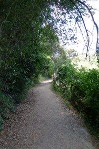 Cami entorn el pantà.