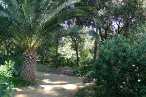 Un racó dels jardins.
