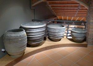 Cossis negres al Museu de la Terrissa.