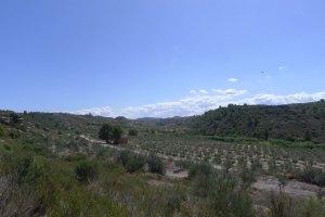 El paisatge que envolta la Roca dels Moros.